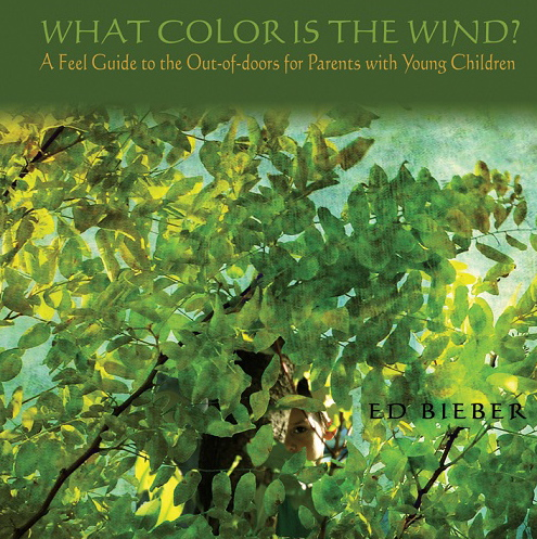 70-What-Color-is-The-Wind